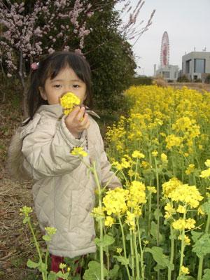 06-0318_Nodoka@nanohana.jpg