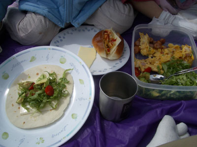 06-0318_picnic.jpg