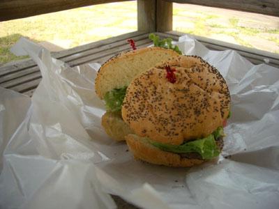 06-0401_burger.jpg